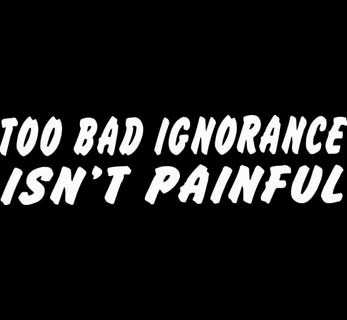 Too Bad Ignorance Isn't Painful Window Sticker Decal