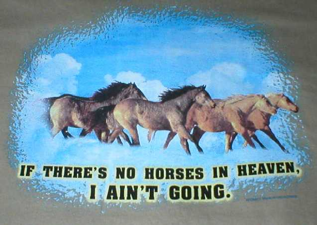 If There's No Horses in Heaven, I Ain't Going Shirt
