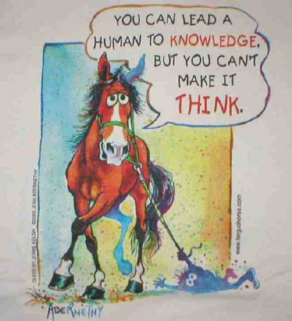 Fergus Horse Leading Human to Knowledge, But Can't Make It Think Shirt