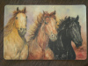 Western Horses Poly Placemat with Foam Backing