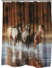 "Polyester Shower Curtain Rush Hour Horses 70"" x 72"""
