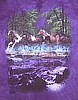 Spring Creek Run Youth Horse Shirt